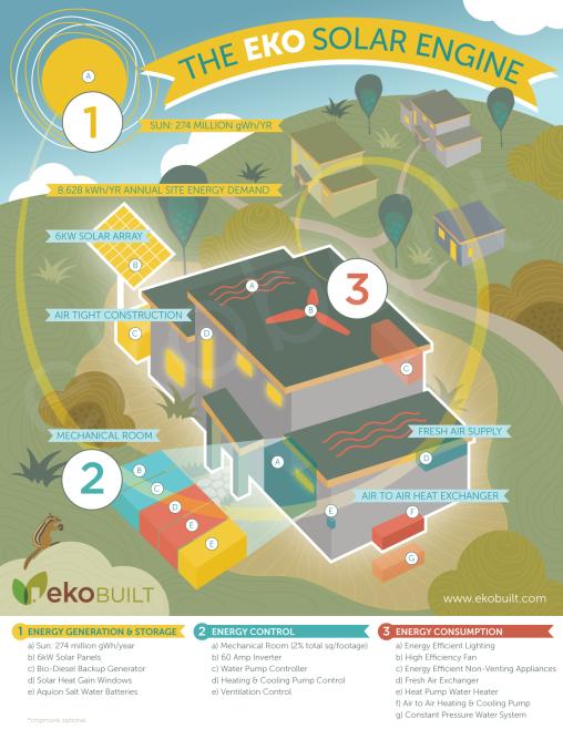 Ottawa Illustration – Passive House Infographic, Community, Trees, Chipmunk