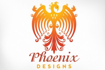 Long established as one of the top designers in the field of Irish dance, this dress maker recently came to us to help revitalize a brand that had been critically overtaken by some of the big names in the industry. We created a powerful new visual identity of a phoenix rising from the flames, its shape a subtle reflection of a dancer standing in the ready position. Along with an effective new website, an exciting contest, and a series of stunning advertisements Phoenix Designs immediately captured the attention of the Irish Dancing world.