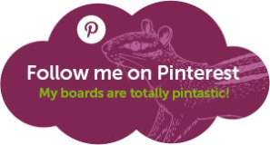 Follow Sumack Loft on Pinterest! (my boards are pintastic)