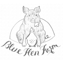 Brand development sketch for Blue Hen Farm's new logo
