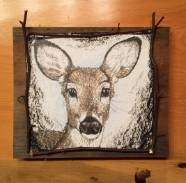 "Deer Gaze 1, 2017. Approx. 7"" x 7"" (not including board) graphite, watercolour pencil, & charcoal; mounted on barnboard, framed with birch saplings (sold)"