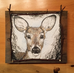 "Deer Gaze 1: (sold) 2017, approx. 7"" x 7"" (not including board) graphite, watercolour pencil, & charcoal; mounted on barnboard, framed with birch saplings."