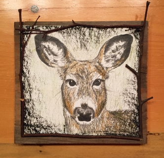 "Deer Gaze 2: 2017, approx. 7"" x 7"" (not including board) graphite, watercolour pencil, & charcoal; mounted on barnboard, framed with birch saplings."