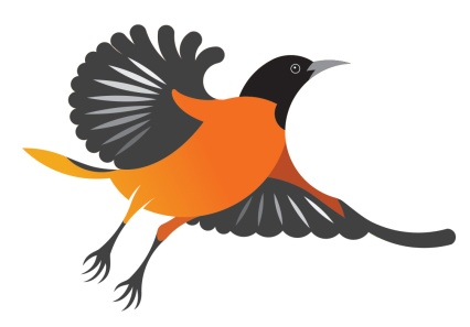 Oriole Lane: a local estate requested an illustration to brand the entrance to the property, choosing the bird namesake of their beautiful avenue.